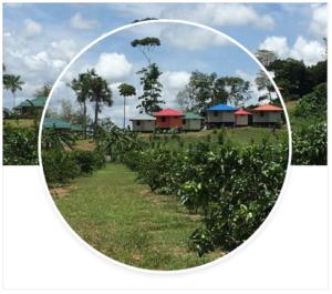 Redi Doti Resort Suriname